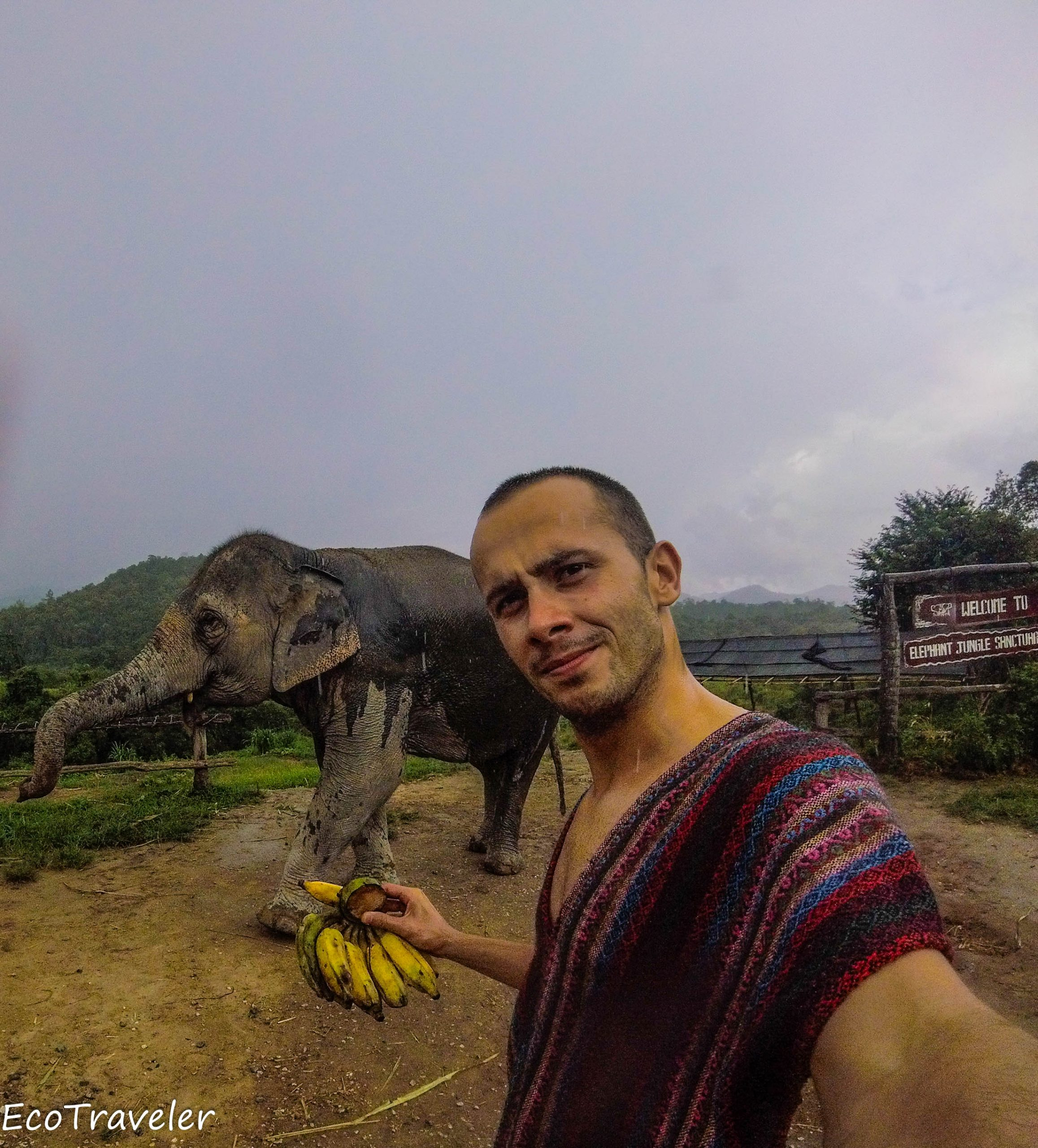 Chiang Mai and Elephants